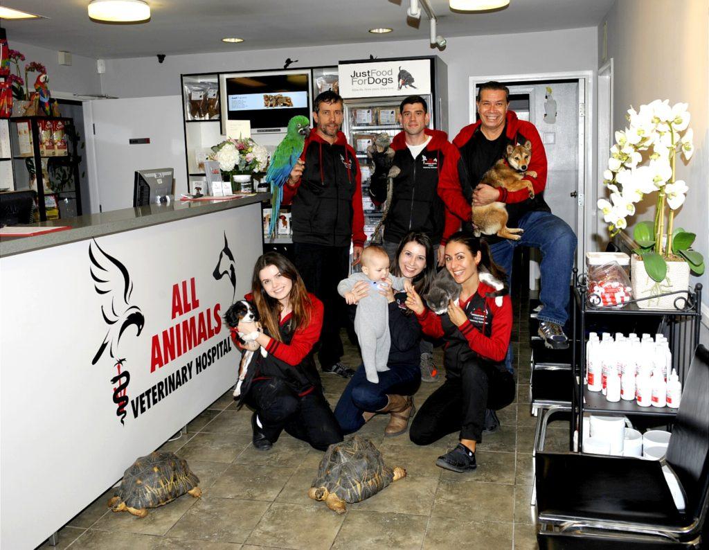 All Animals Veterinary Hospital Staff