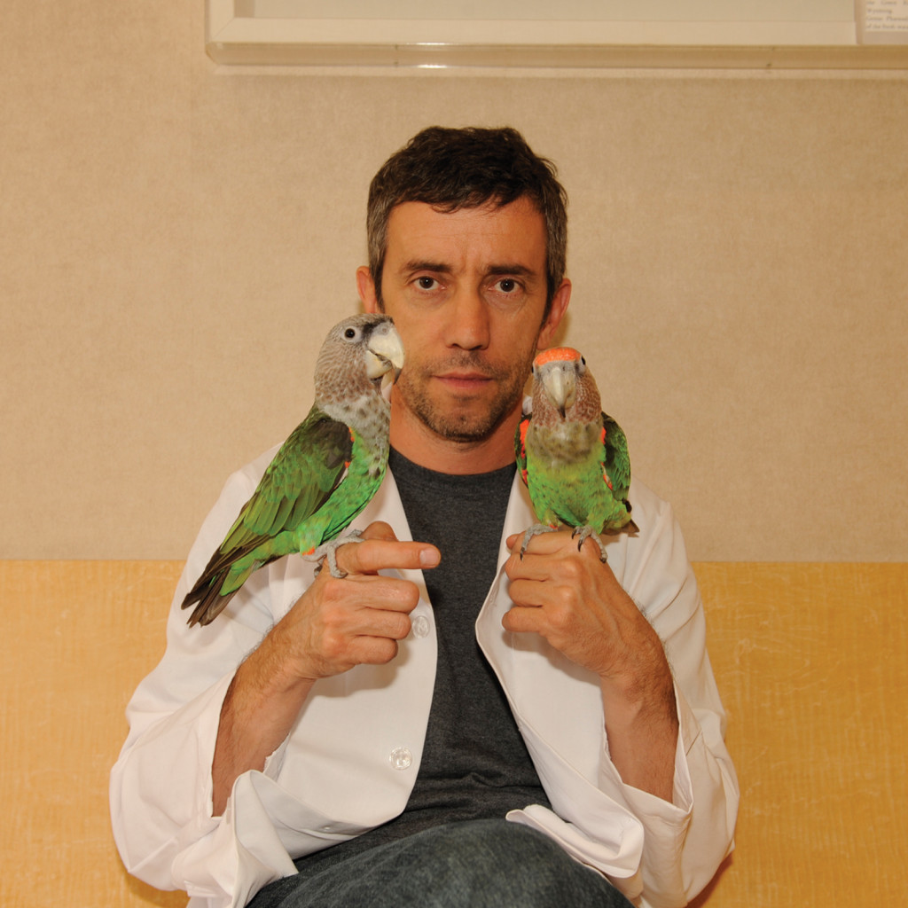 avian-specialty-icon